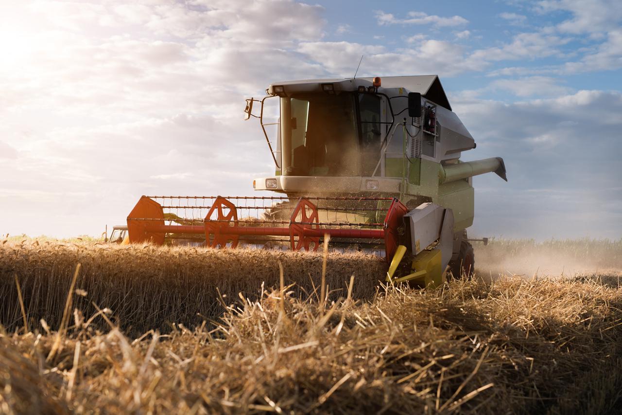 Politik - Ernährung und Landwirtschaft